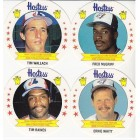 1988 Hostess Toronto Blue Jays Montreal Expos 24 disc set (Andres Galarraga Fred McGriff Tim Raines)