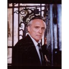 Dennis Hopper autographed 8x10 portrait photo