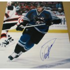 Teemu Selanne autographed San Jose Sharks 16x20 poster size photo
