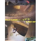 Willy Santos autographed 18x24 skateboarding poster