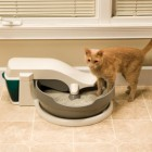 Pet Safe Simply Clean Continuous Clean Litter Box