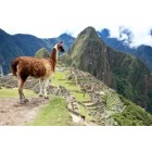 Explore Machu Picchu for Two